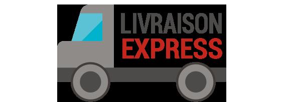 Logo Livraison express